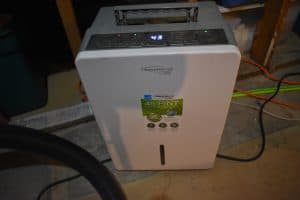 ideal-temperatures-for-chinchillas-dehumidifier