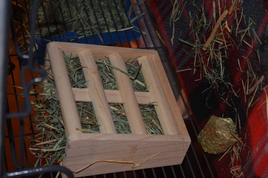 wooden hay feeder for chinchilla