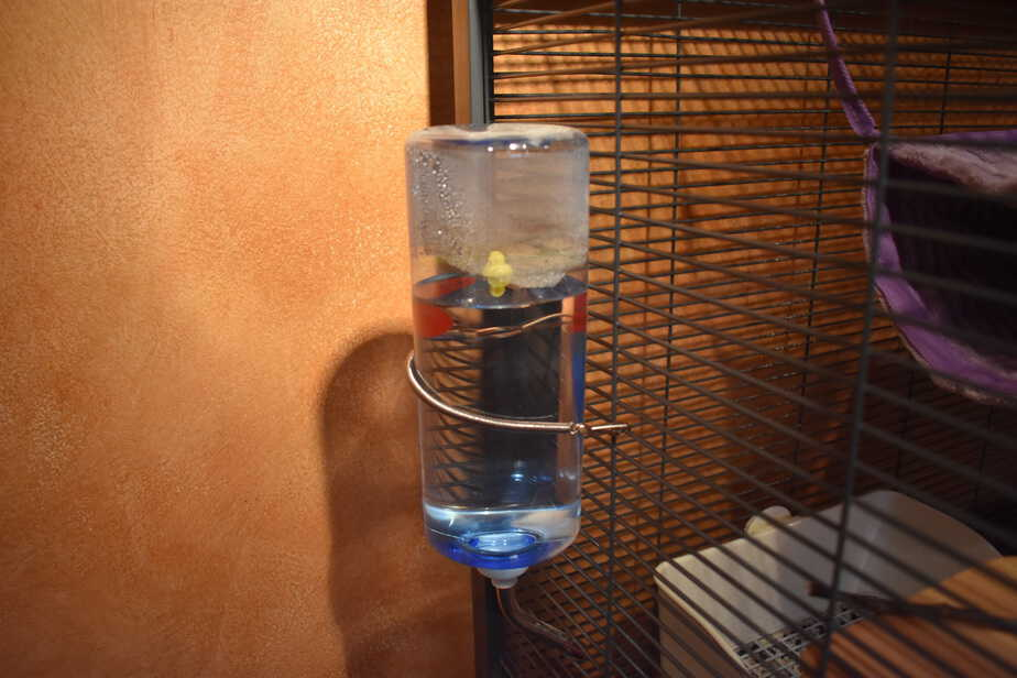 water bottle on chinchilla cage
