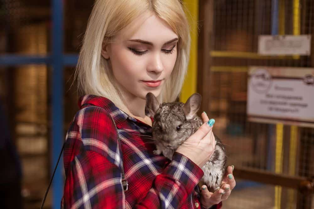 woman holding chinchilla so he does not bark