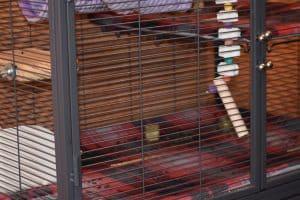 durable chinchilla cage