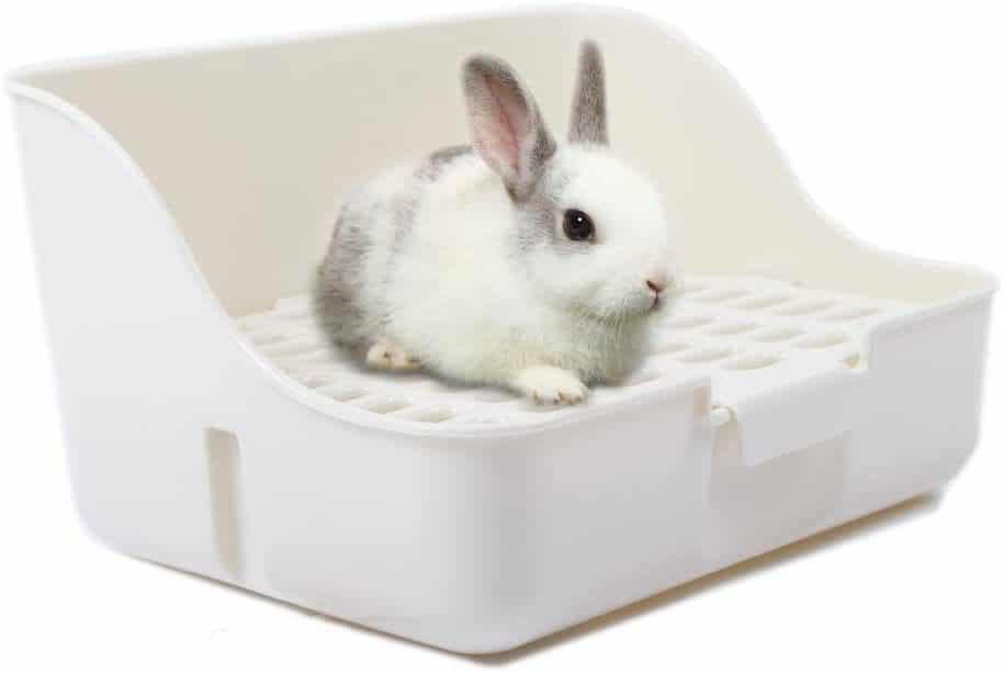 Aimee Square Litter Pan